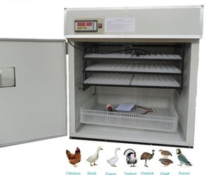 Poultry Egg Hatching Machine