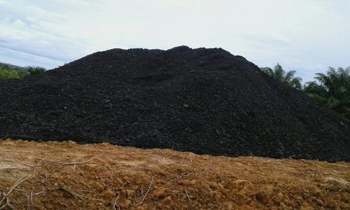 Steam Coal East Kalimantan