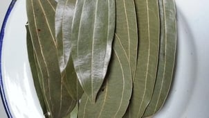 Indian Green Bay Leaves