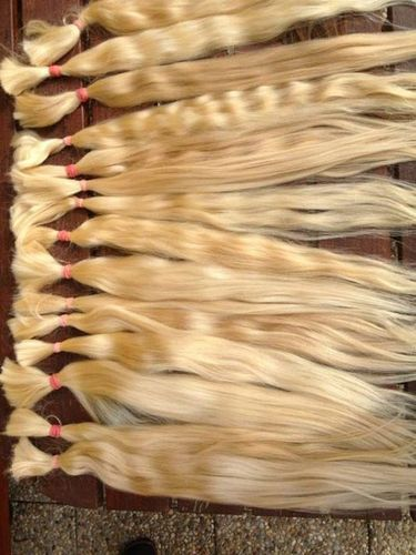 Female Blonde Human Hairs
