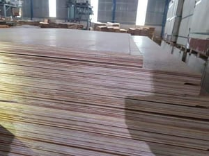 Keruing 28mm Container Flooring Plywood