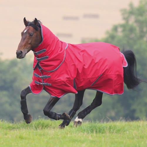 Horse Rain Sheet Rugs