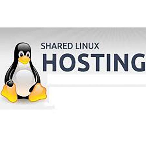 Linux Server Hosting Service in 11-Sector, Noida