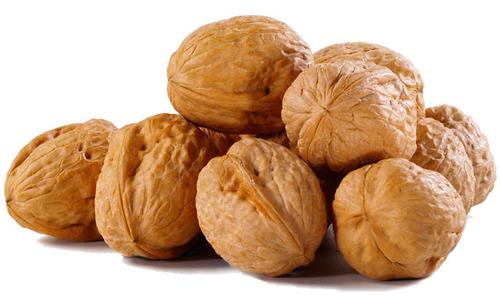 First Grade Dried Walnuts