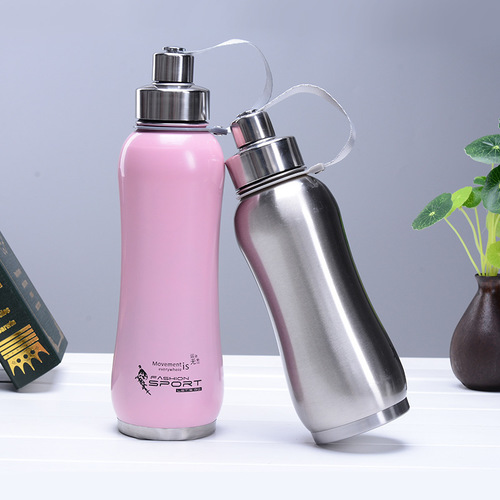 Double Insulated Steel Bottles