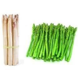 Organically Grown Imported Asparagus