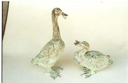 Beautiful Garden Duck Pair