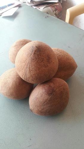 Dry Ball Copra