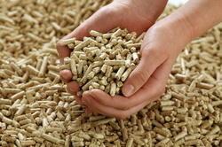 Low Price Biomass Pellet
