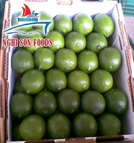Fresh Seedless Green Lime