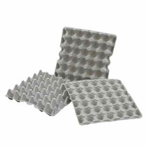 Paper Pulp Moulded Egg Trays