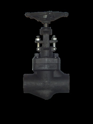 Reliable Forged Globe Valve
