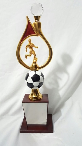 Football Trophy With Crystal