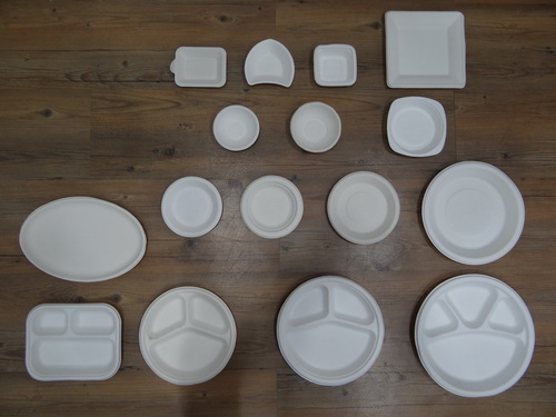 Eco Friendly Disposable Plates, Cups And Tray
