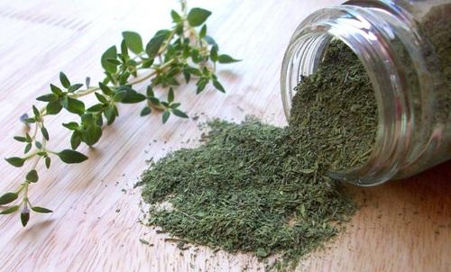 Herbal Green Fresh Thyme