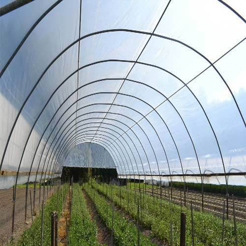 Uv Protection Films For Green Houses