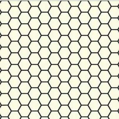 Stainless Steel Hex Sheet