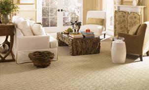 Fancy Designer Carpet