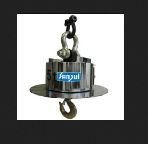 Crane Foundry Weighing Scale