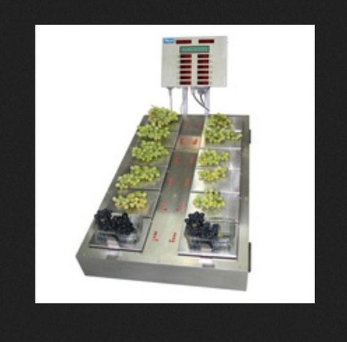 Grape Punnet Weighing Scale