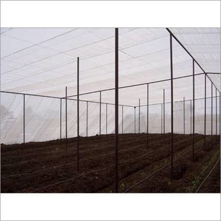 Best Agriculture Greenhouse