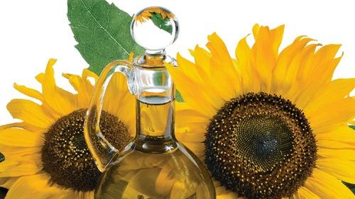 Unrefined Crude Sunflower Oil SFO