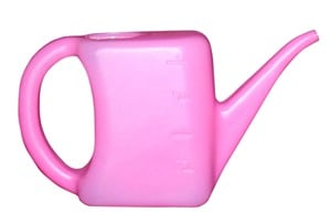 Watering Can For Plant