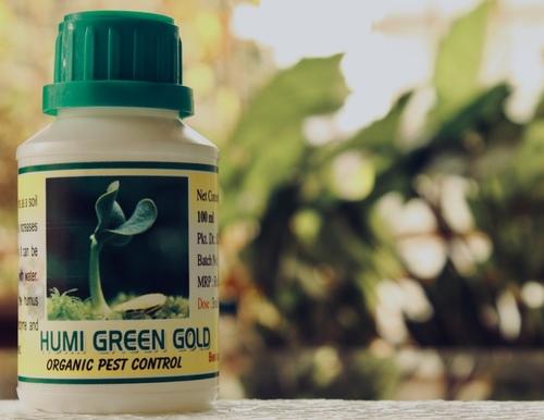 Humi Green Gold