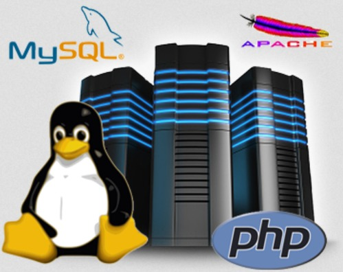Linux Shared Web Hosting Services - Logix Infosecurity