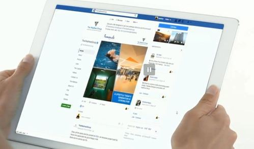 Social Media Management Services - NetBiz Systems Pvt  Ltd