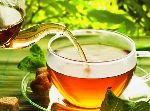 Fresh Organic Green Tea