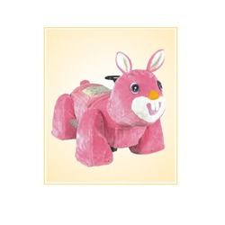 Rabbit Walking Animal Rides