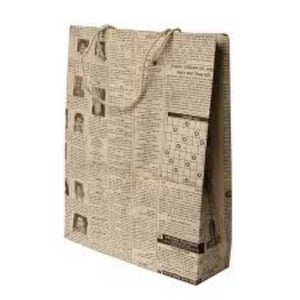 Disposable Newspaper Carry Bags