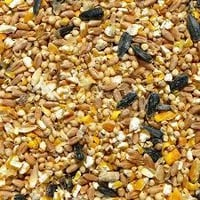 Organic Poultry Feed