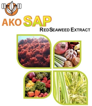 Red Seaweed Extract (AkoSap)