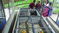 Waste Composting (Wet Waste Management)