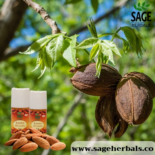 Sage Herbal Badam Rogan