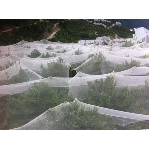Milky White Anti Hail Net in Mohali, Punjab - Agri Input
