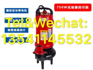 0.75kW 1HP Small Sewage Submersible