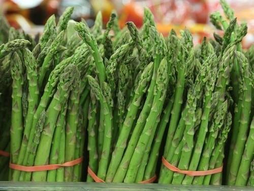 Frozen Asparagus/ Fresh Asparagus / Green Asparagus