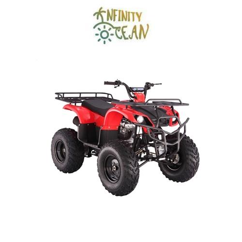 ATV Motorcycle - TaoTao ATA-250D