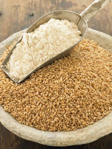 Natural Organic Wheat Flour