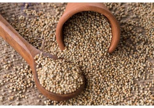High Grade Pearl Millet