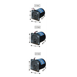 AC and DC Induction Motor With Gear Head