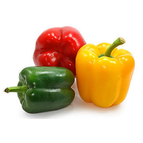 Fine Quality Fresh Bell Pepper
