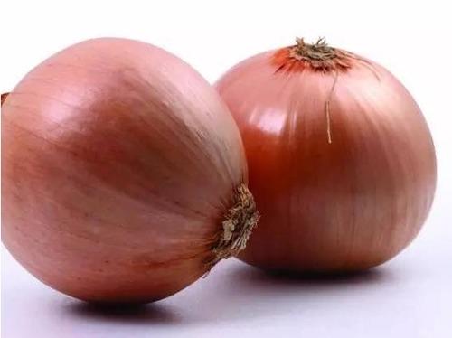 Round Fresh Cheap Onion