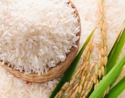 Non-Basmati Rice (Raw, Steam, Golden Sella, White/Creamy Sella) Certifications: All Certifications Available