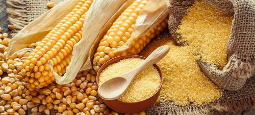 Poultry Feed Maize Certifications: All Certifications Available