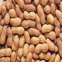 Dried New Crop Peanuts Kernel Without Shell