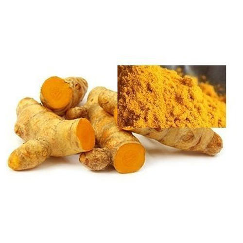 Curcumin Extract - Curcuma Longa Extract